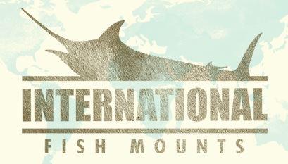 Galveston Fishing Charter Company | Kingfish Trip | All